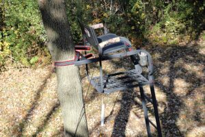 Best ladder tree stand
