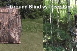Ground Blind vs Tree Stand