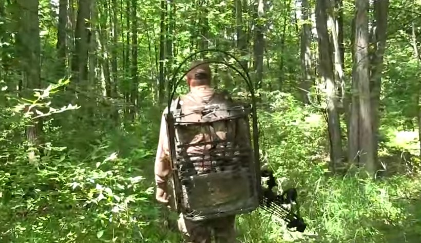 Choose The Perfect Tree Stand for Hunting